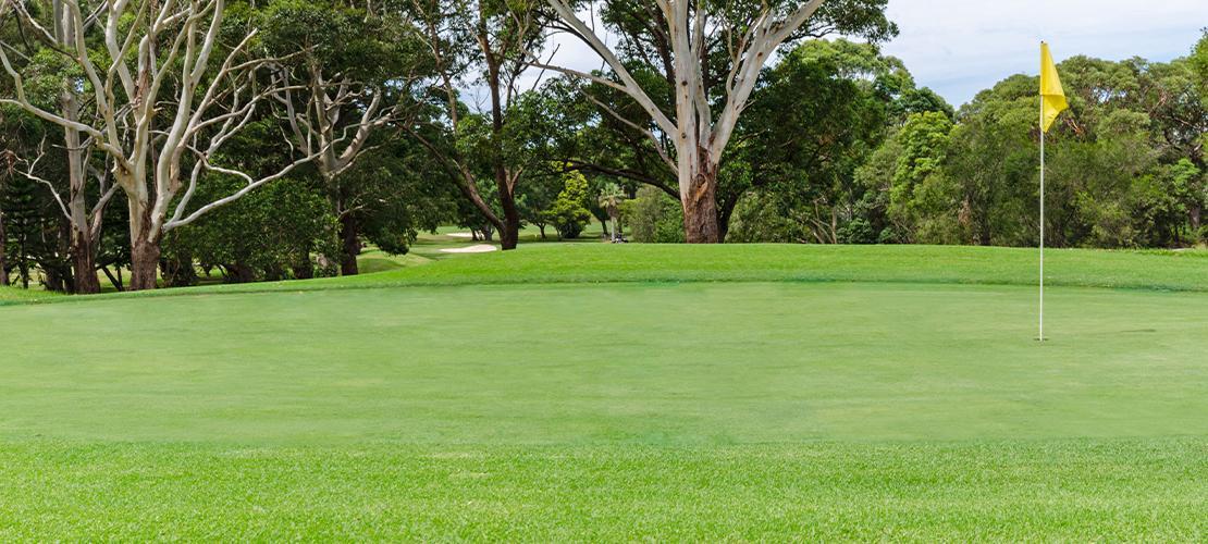 Castle Cove Golf Course Header