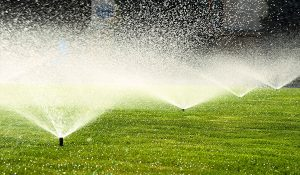 Irrigation Header Image