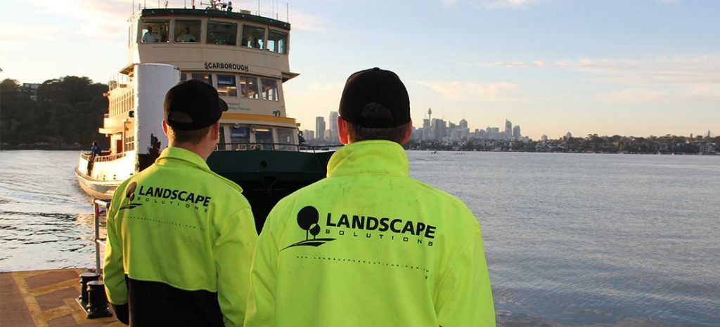 Sydney Landscape Solutions Maintenance