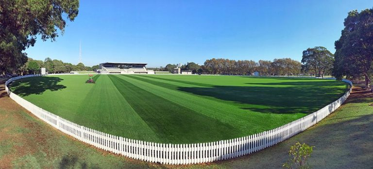 Private School Sydney Sports Field Turf