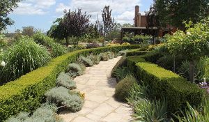 Landscape Solutions Maintenance Services