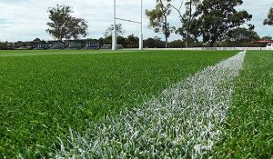 Landscape Solutions Sports Turf Header
