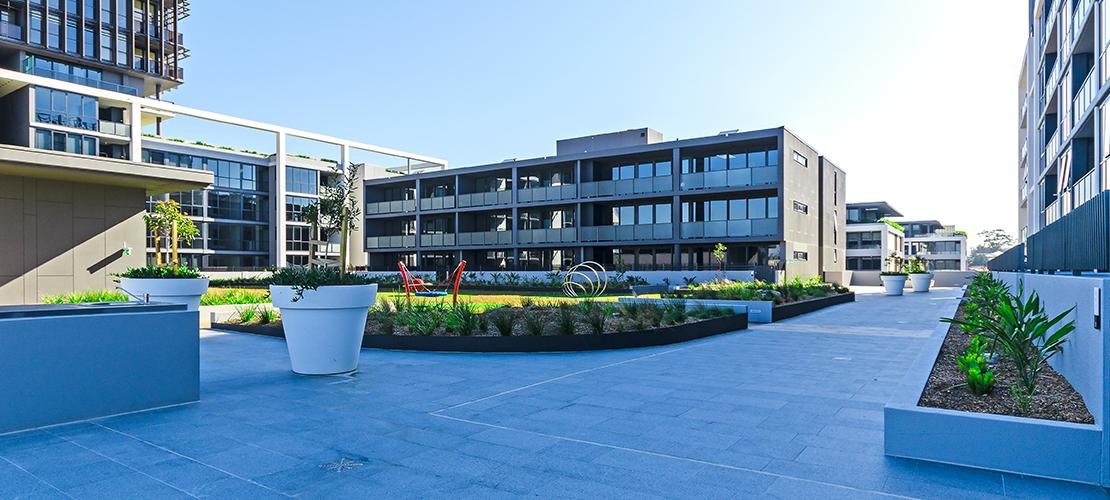 The Promenade, Parramatta - Landscape Construction