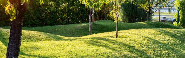 Covid19 & Landscape Solutions
