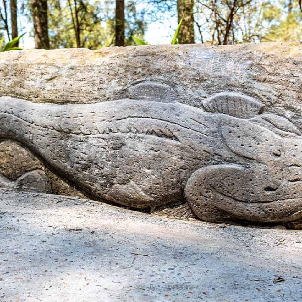 Wangal Reserve sandstone feature