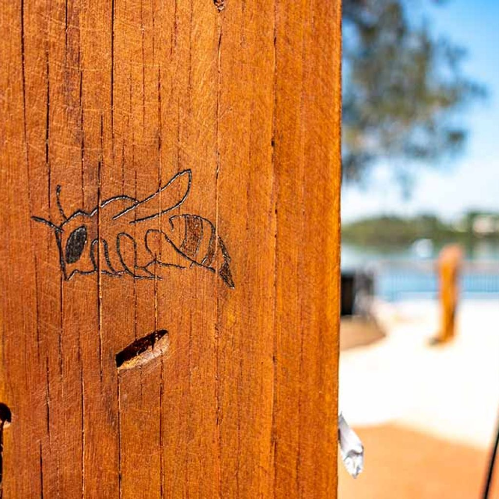 Wangal Reserve timber post etching