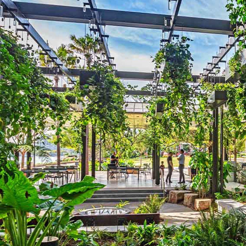 Riverside Green, Southbank Dense Planting