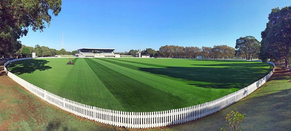 Private School Sydney Sports Field Turf